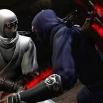 Ninja Gaiden 3 - 28