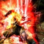 Ninja Gaiden 3 - 30