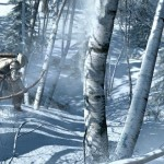 Assassins Creed 3 - 04